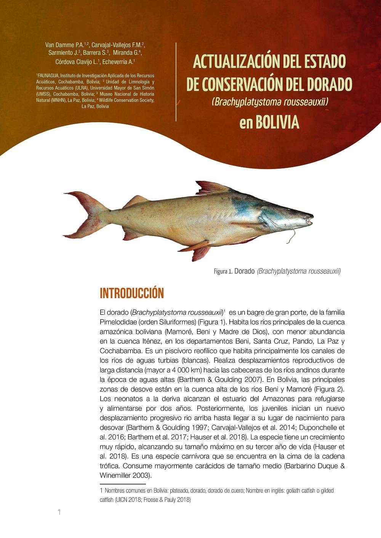 Estado de conservación